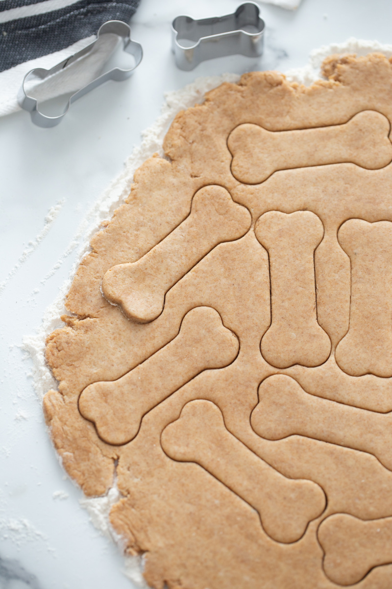 dough rolled out and dog biscuit cutter used to cut shapes