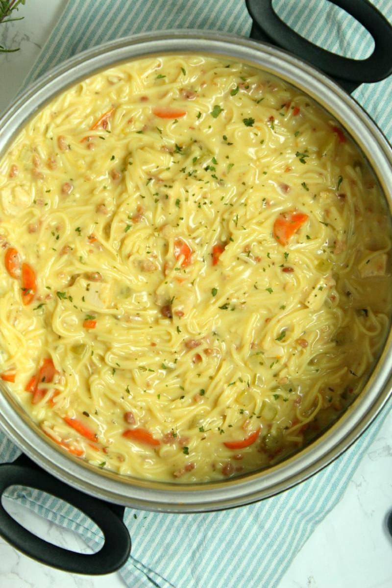 pot of crack chicken noodle soup
